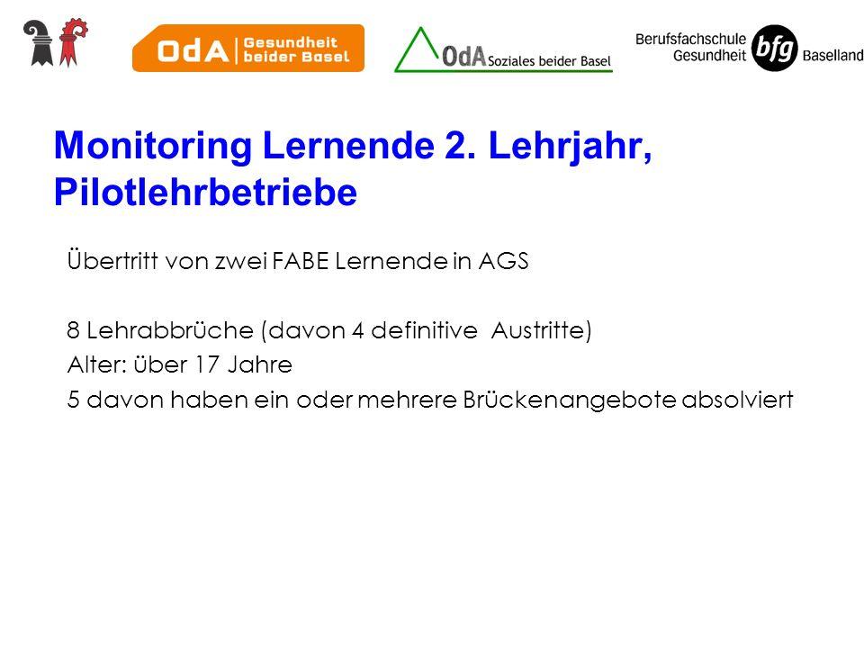 Monitoring Lernende 2.