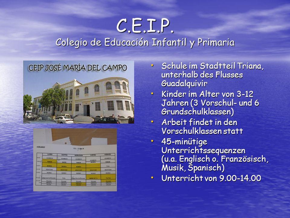 C.E.I.P.
