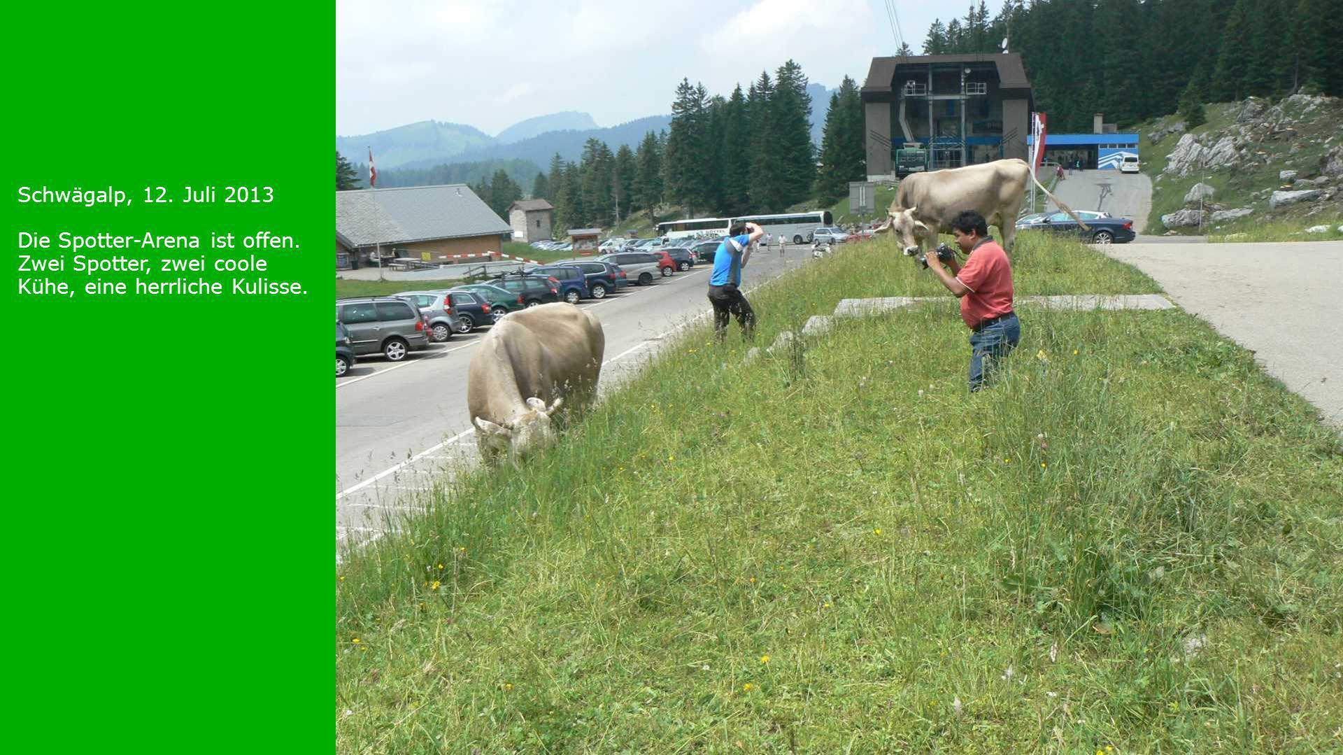 Schwägalp, 12. Juli 2013 Die Spotter-Arena ist offen. Zwei Spotter, zwei coole Kühe, eine herrliche Kulisse.