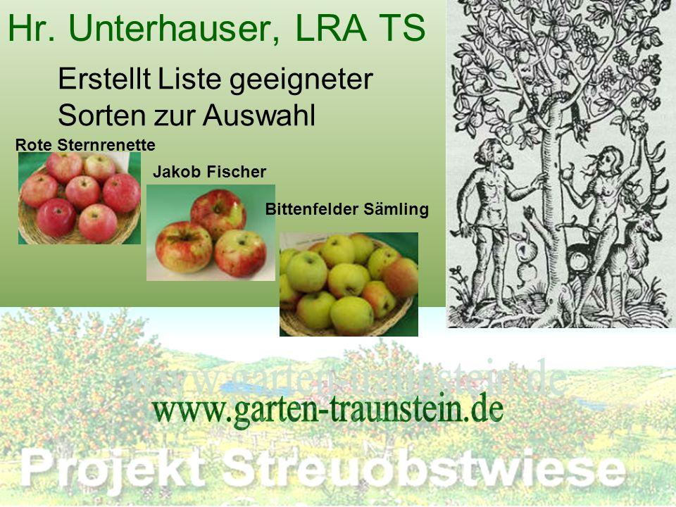 Hr. Unterhauser, LRA TS Erstellt Liste geeigneter Sorten zur Auswahl Rote Sternrenette Jakob Fischer Bittenfelder Sämling