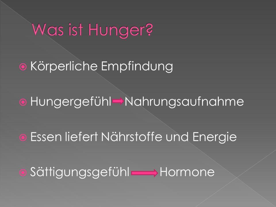 Körperliche Empfindung Hungergefühl Nahrungsaufnahme Essen liefert Nährstoffe und Energie Sättigungsgefühl Hormone