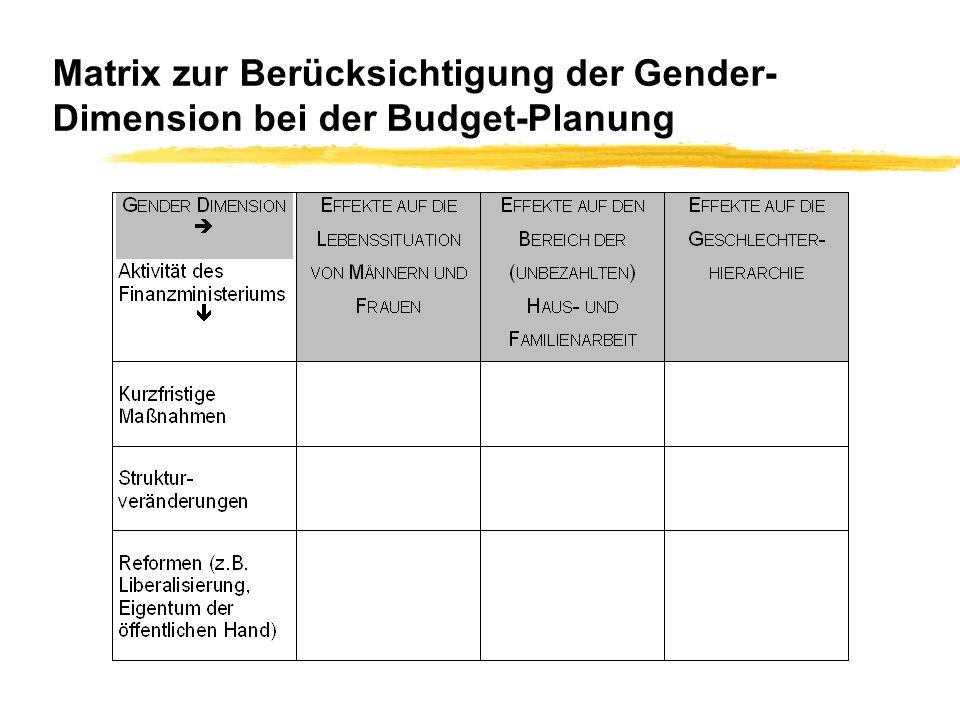 Matrix zur Berücksichtigung der Gender- Dimension bei der Budget-Planung