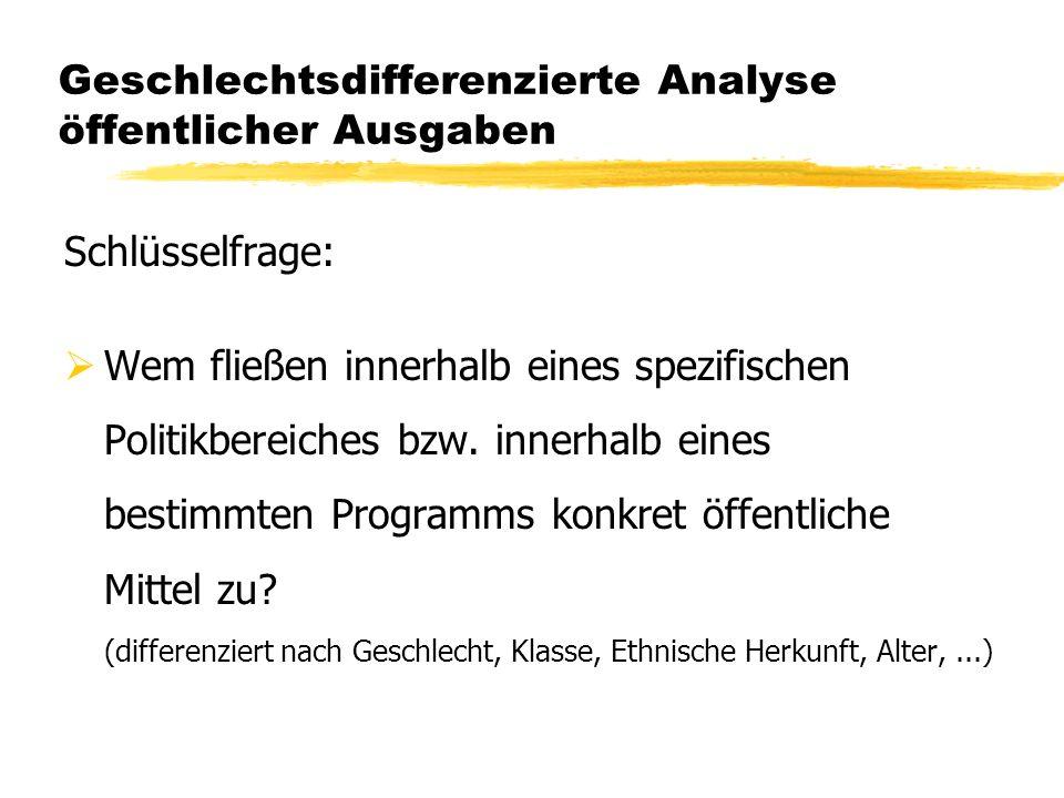 Geschlechtsdifferenzierte Analyse öffentlicher Ausgaben Schlüsselfrage: Wem fließen innerhalb eines spezifischen Politikbereiches bzw. innerhalb eines