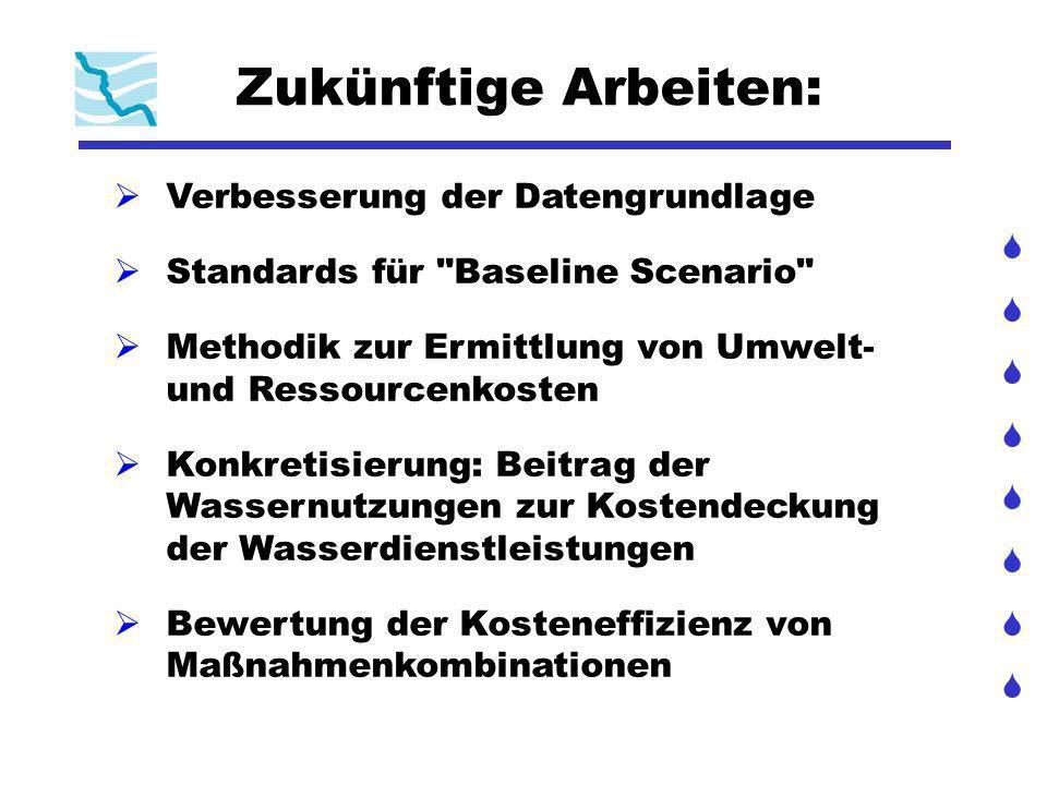 Zukünftige Arbeiten: Verbesserung der Datengrundlage Standards für Baseline Scenario Methodik zur Ermittlung von Umwelt- und Ressourcenkosten Konkretisierung: Beitrag der Wassernutzungen zur Kostendeckung der Wasserdienstleistungen Bewertung der Kosteneffizienz von Maßnahmenkombinationen
