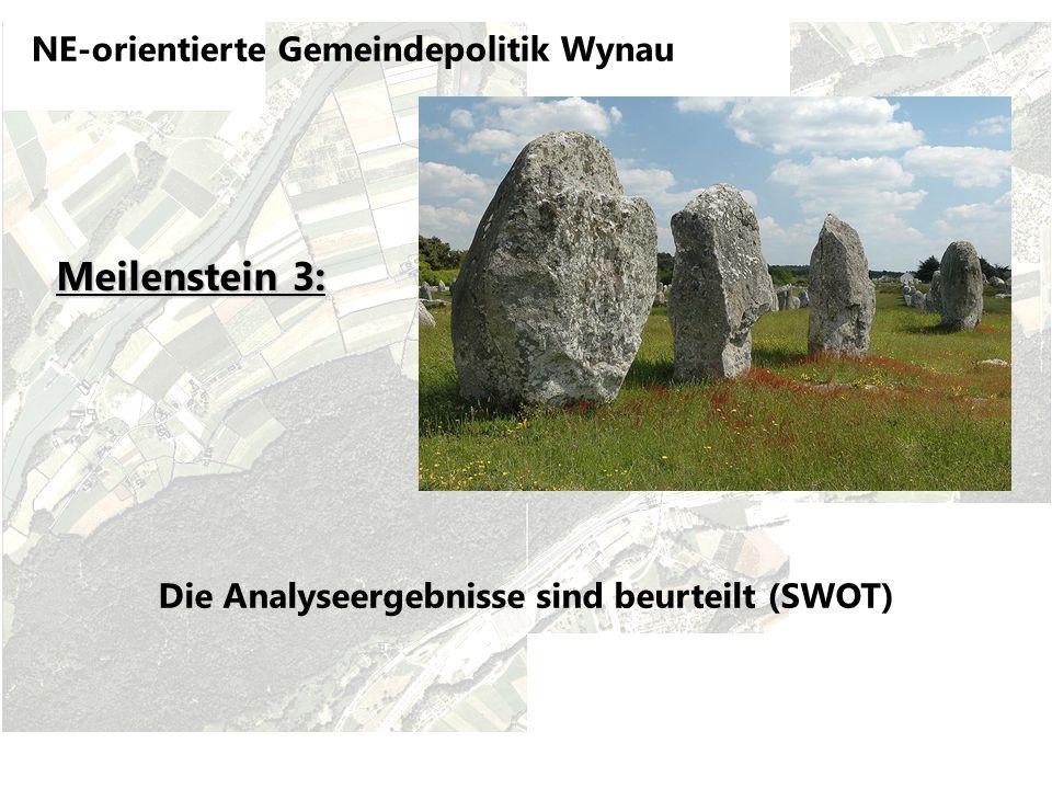 NE-orientierte Gemeindepolitik Wynau Die Analyseergebnisse sind beurteilt (SWOT) Meilenstein 3: