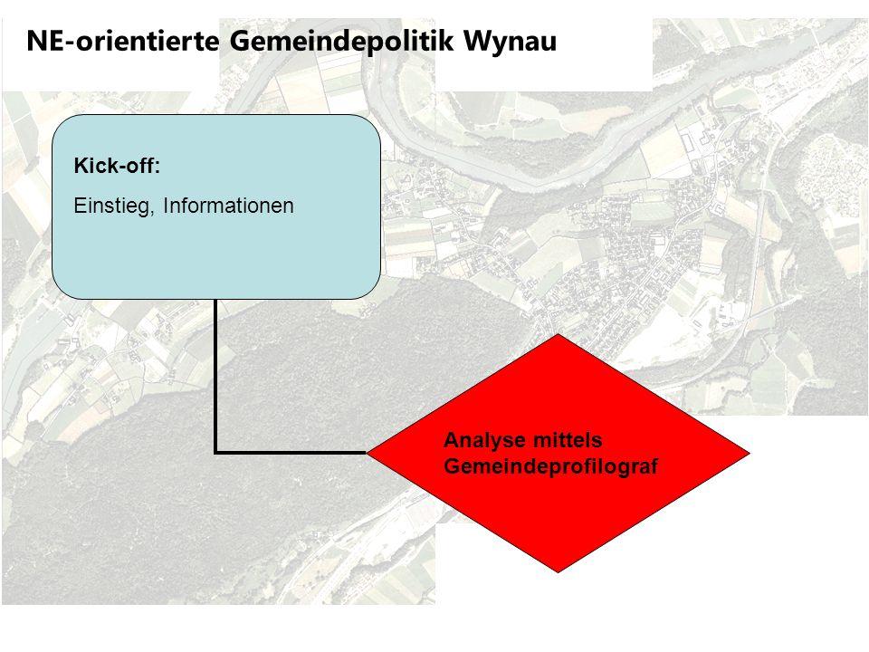NE-orientierte Gemeindepolitik Wynau Workshop: Konsolidierung Ergebnisse Gemeindeprofilograf – Diskussionen Analyse mittels Gemeindeprofilograf