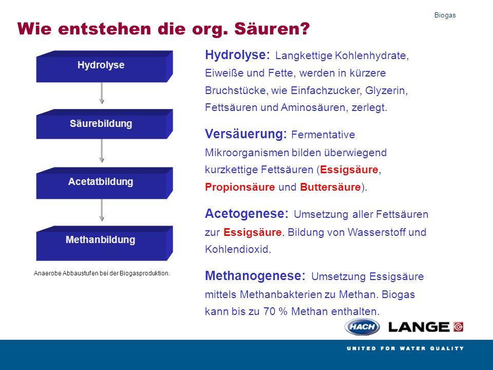 Biogas Biogasseminar Steinkimmen 22.06.2012 100% Entstehen im 2.