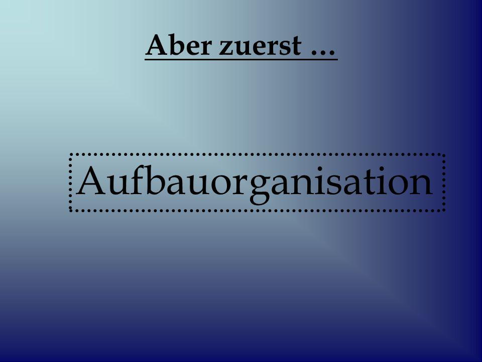 Aufgabe dieser Organisation : - eine Aufspaltung in so viele Teilaufgaben vorzunehmen, dass eine sinnvolle arbeitsteilige Gliederung und Ordnung entsteht.