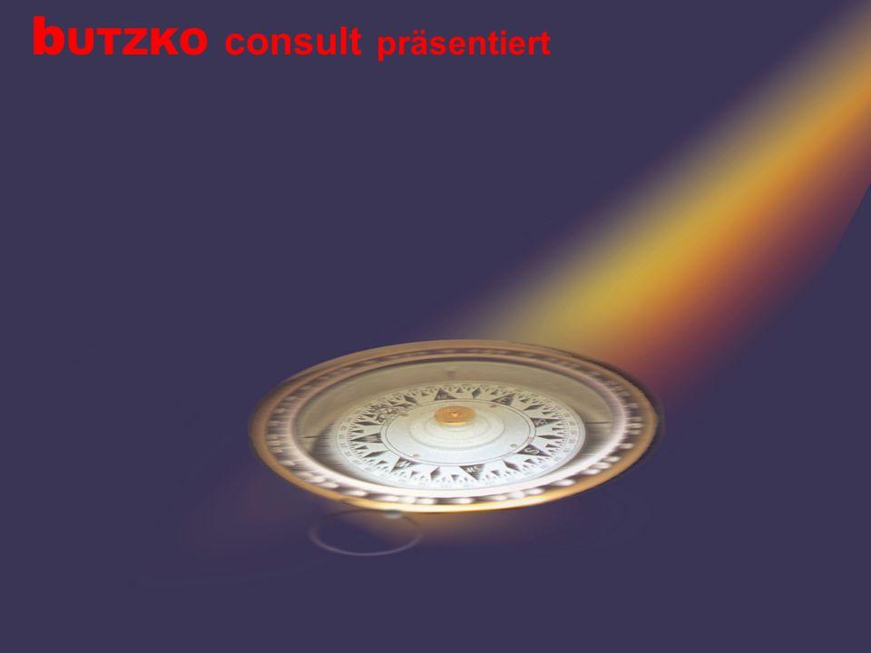 2 b UTZKO consult DNLA Potenzialanalysen Das DNLA-Expertensystem