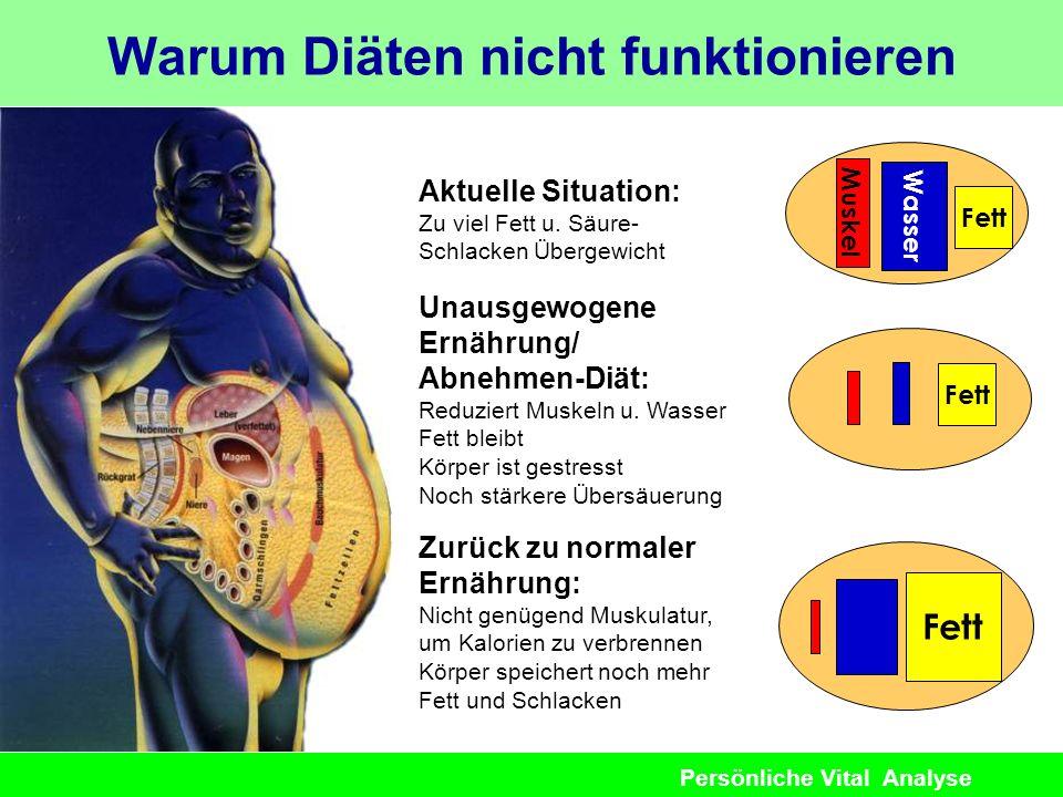 Persönliche Vital Analyse Warum Diäten nicht funktionieren Aktuelle Situation: Zu viel Fett u. Säure- Schlacken Übergewicht Wasser Fett Muskel Unausge