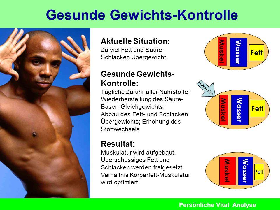 Persönliche Vital Analyse Gesunde Gewichts-Kontrolle Aktuelle Situation: Zu viel Fett und Säure- Schlacken Übergewicht Wasser Fett Muskel Gesunde Gewi