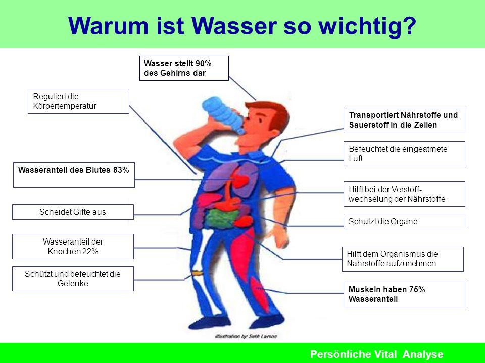 Persönliche Vital Analyse Warum ist Wasser so wichtig? Wasser stellt 90% des Gehirns dar Transportiert Nährstoffe und Sauerstoff in die Zellen Regulie