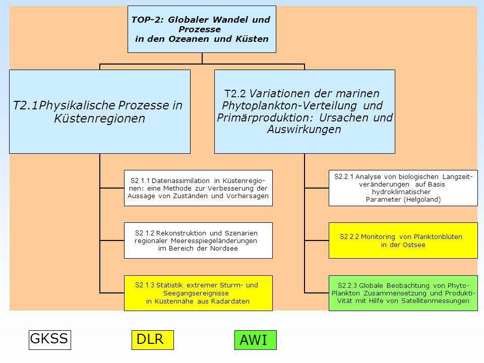 TOP-2: Globaler Wandel und Prozesse in den Ozeanen und Küsten T2.1Physikalische Prozesse in Küstenregionen S2.1.1 Datenassimilation in Küstenregio- ne