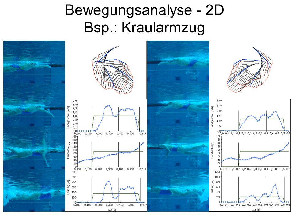 Bewegungsanalyse - 2D Bsp.: Kraularmzug