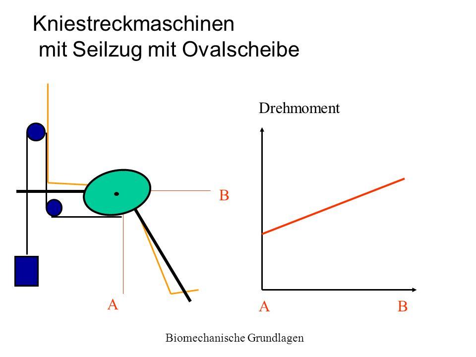 Kniestreckmaschinen mit Seilzug mit Ovalscheibe A B Drehmoment AB Biomechanische Grundlagen