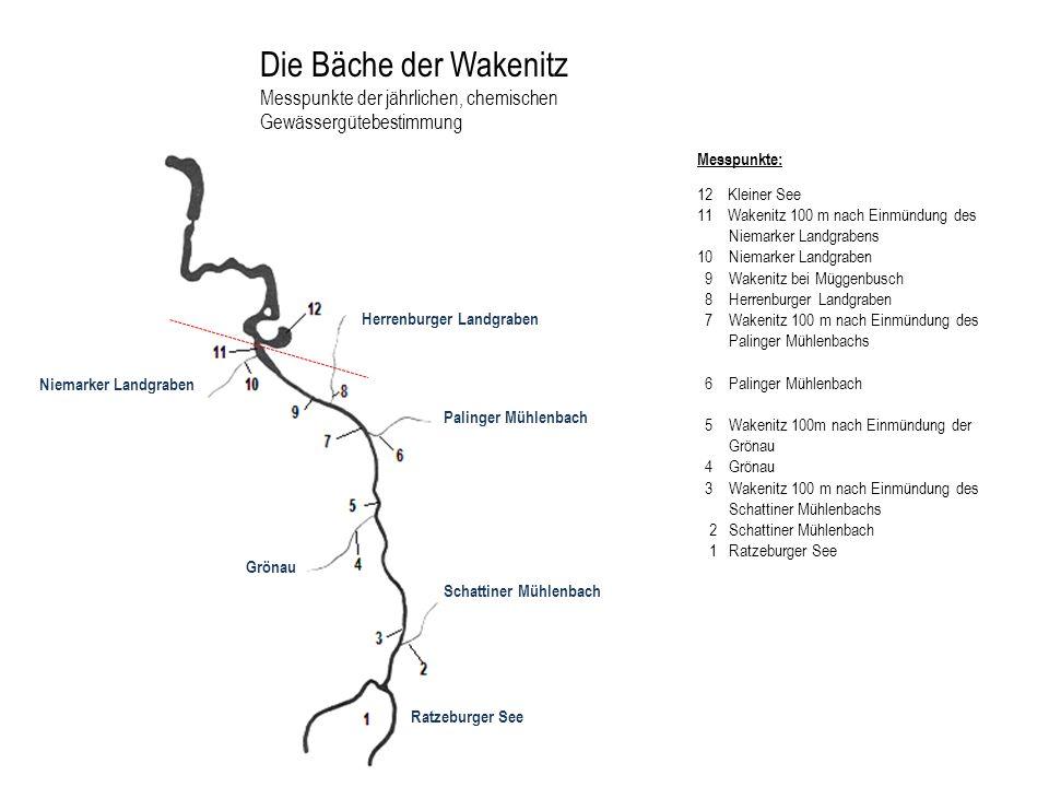 Die Bäche der Wakenitz Messpunkte der jährlichen, chemischen Gewässergütebestimmung Messpunkte: 12 Kleiner See 11 Wakenitz 100 m nach Einmündung des N