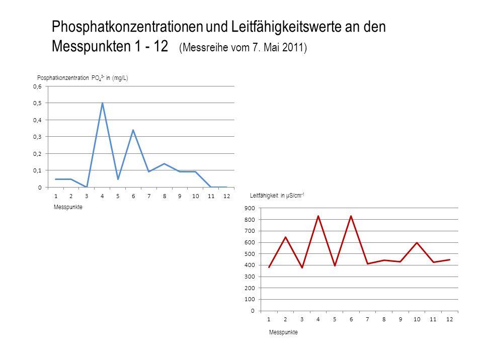 Phosphatkonzentrationen und Leitfähigkeitswerte an den Messpunkten 1 - 12 (Messreihe vom 7. Mai 2011) Posphatkonzentration PO 4 3- in (mg/L) Messpunkt