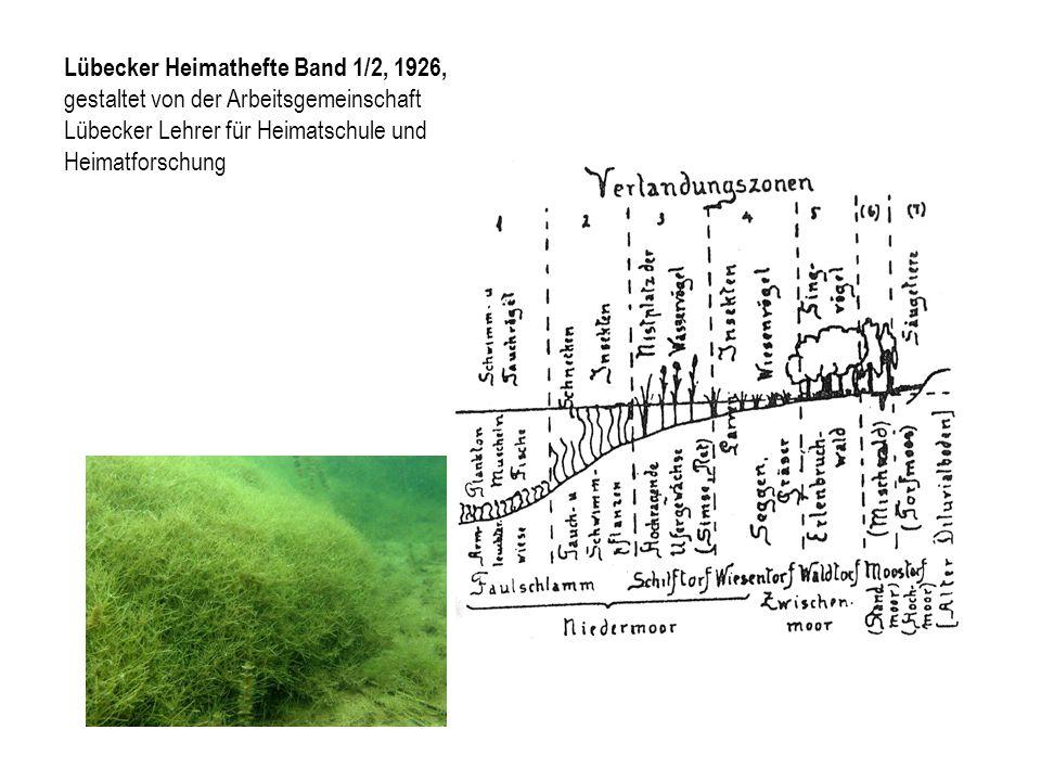 Lübecker Heimathefte Band 1/2, 1926, gestaltet von der Arbeitsgemeinschaft Lübecker Lehrer für Heimatschule und Heimatforschung