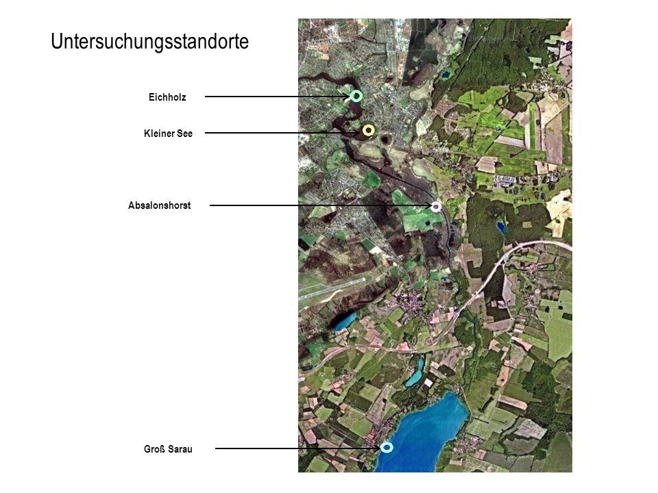 Eichholz Kleiner See Absalonshorst Groß Sarau Untersuchungsstandorte
