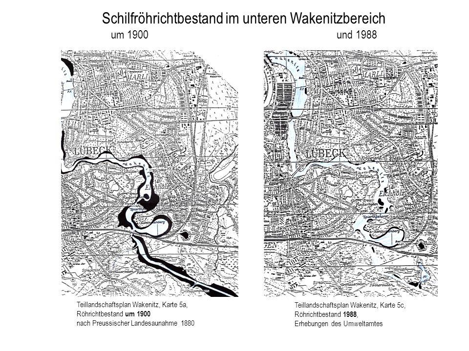 Teillandschaftsplan Wakenitz, Karte 5c, Röhrichtbestand 1988, Erhebungen des Umweltamtes Teillandschaftsplan Wakenitz, Karte 5a, Röhrichtbestand um 19