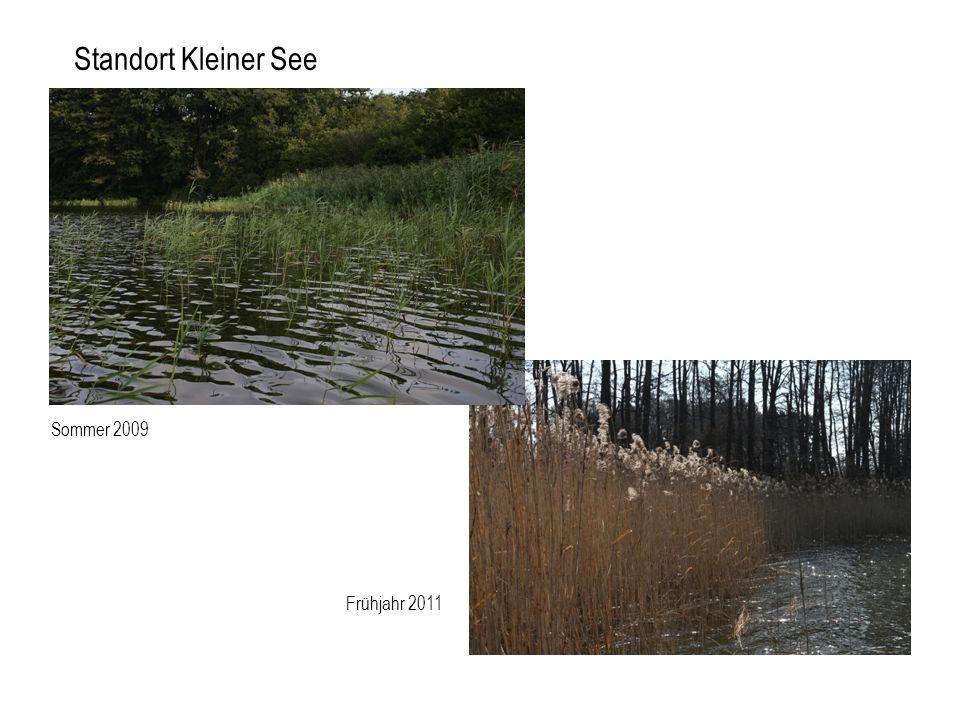 Standort Kleiner See Sommer 2009 Frühjahr 2011