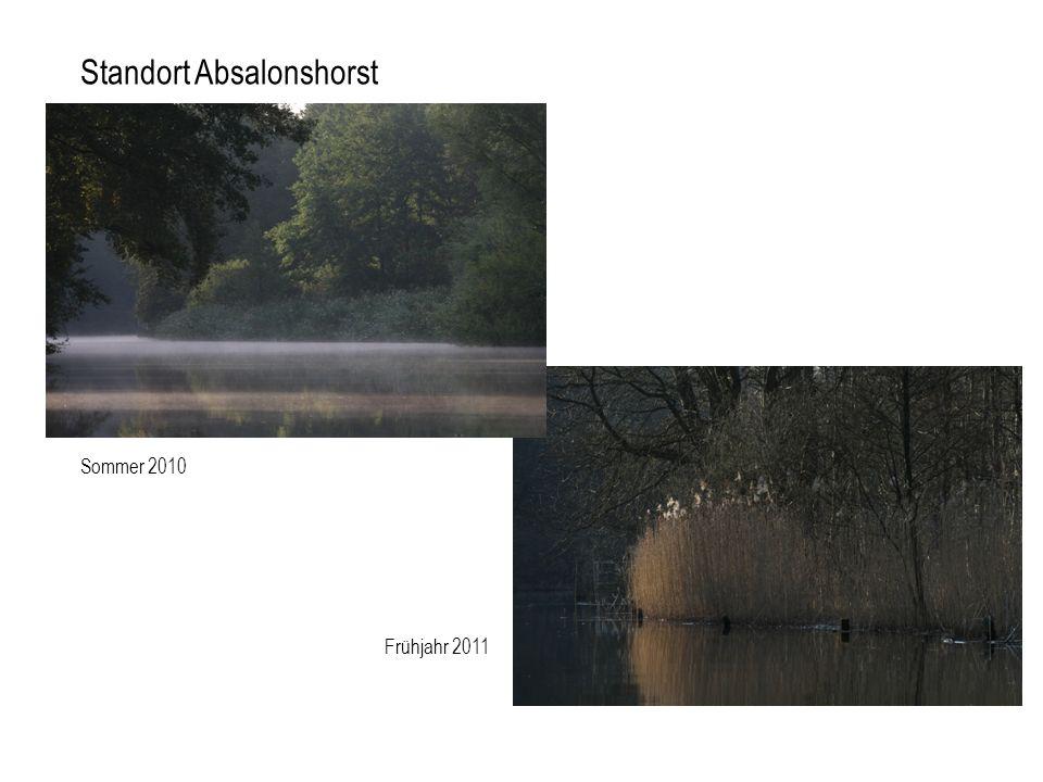 Standort Absalonshorst Frühjahr 2011 Sommer 2010