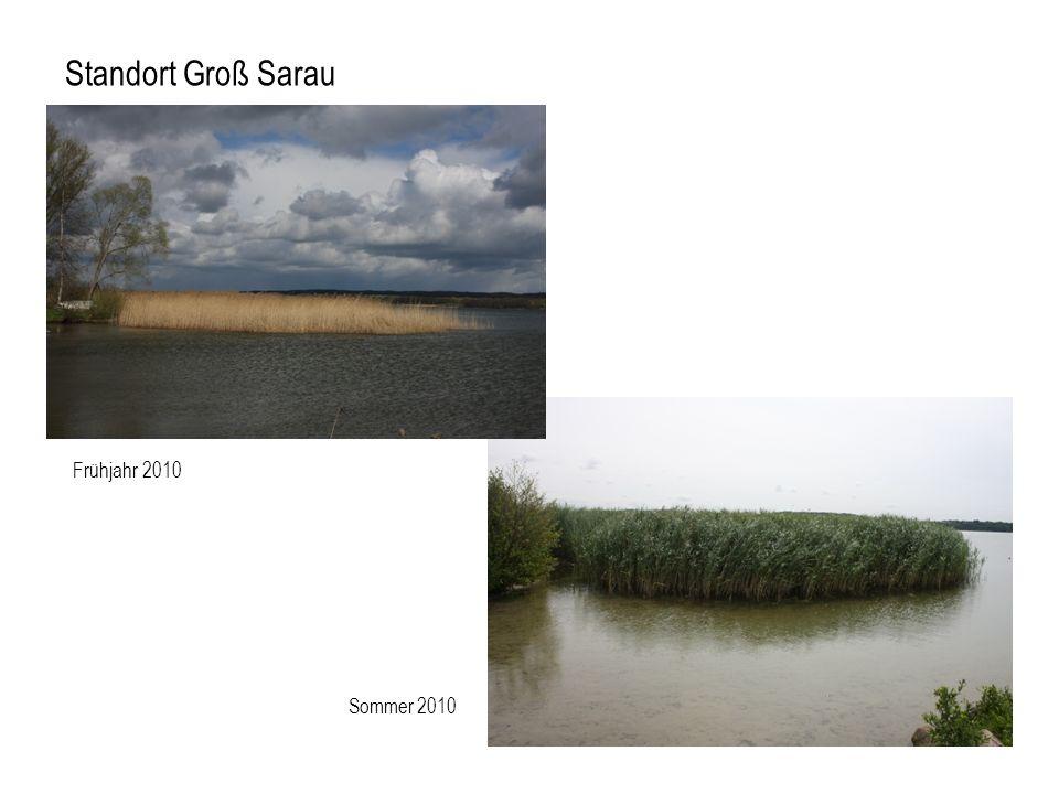 Frühjahr 2010 Standort Groß Sarau