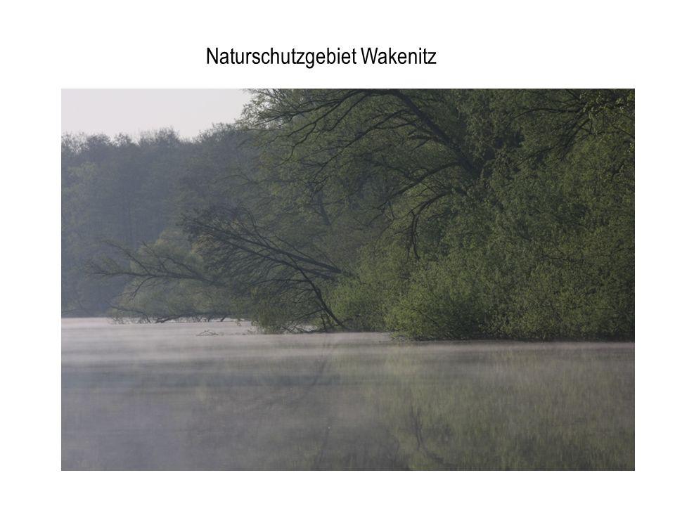 Naturschutzgebiet Wakenitz