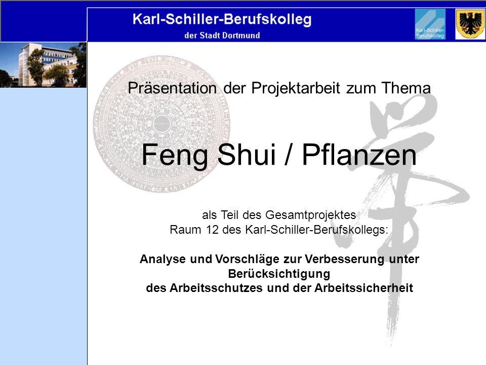 Präsentation der Projektarbeit zum Thema Feng Shui / Pflanzen als Teil des Gesamtprojektes Raum 12 des Karl-Schiller-Berufskollegs: Analyse und Vorsch