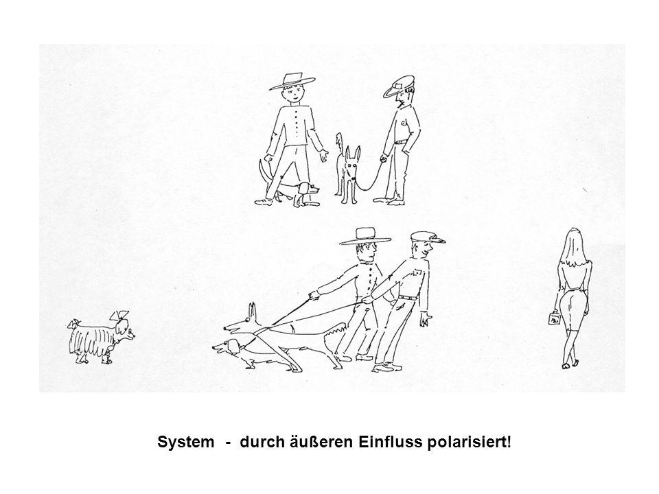 System - durch äußeren Einfluss polarisiert!