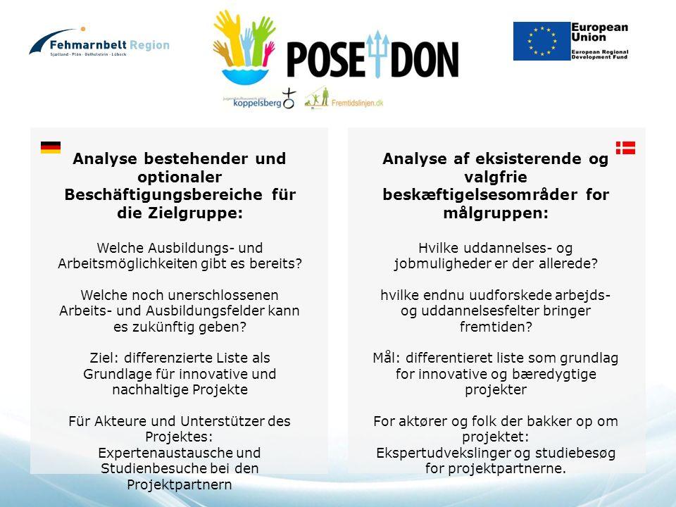 Analyse bestehender und optionaler Beschäftigungsbereiche für die Zielgruppe: Welche Ausbildungs- und Arbeitsmöglichkeiten gibt es bereits.