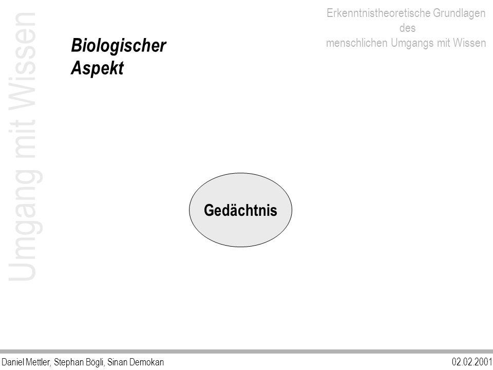 Daniel Mettler, Stephan Bögli, Sinan Demokan02.02.2001 Erkenntnistheoretische Grundlagen des menschlichen Umgangs mit Wissen Umgang mit Wissen Biologi