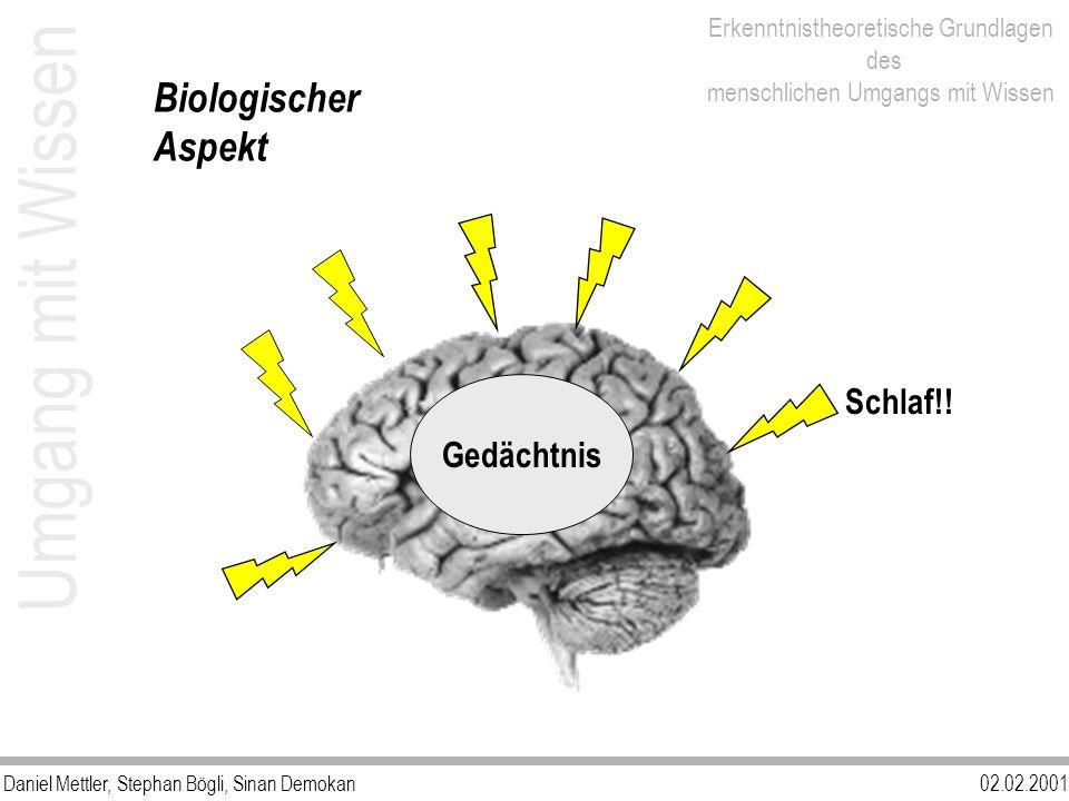 Daniel Mettler, Stephan Bögli, Sinan Demokan02.02.2001 Erkenntnistheoretische Grundlagen des menschlichen Umgangs mit Wissen Schlaf!! Gedächtnis Umgan