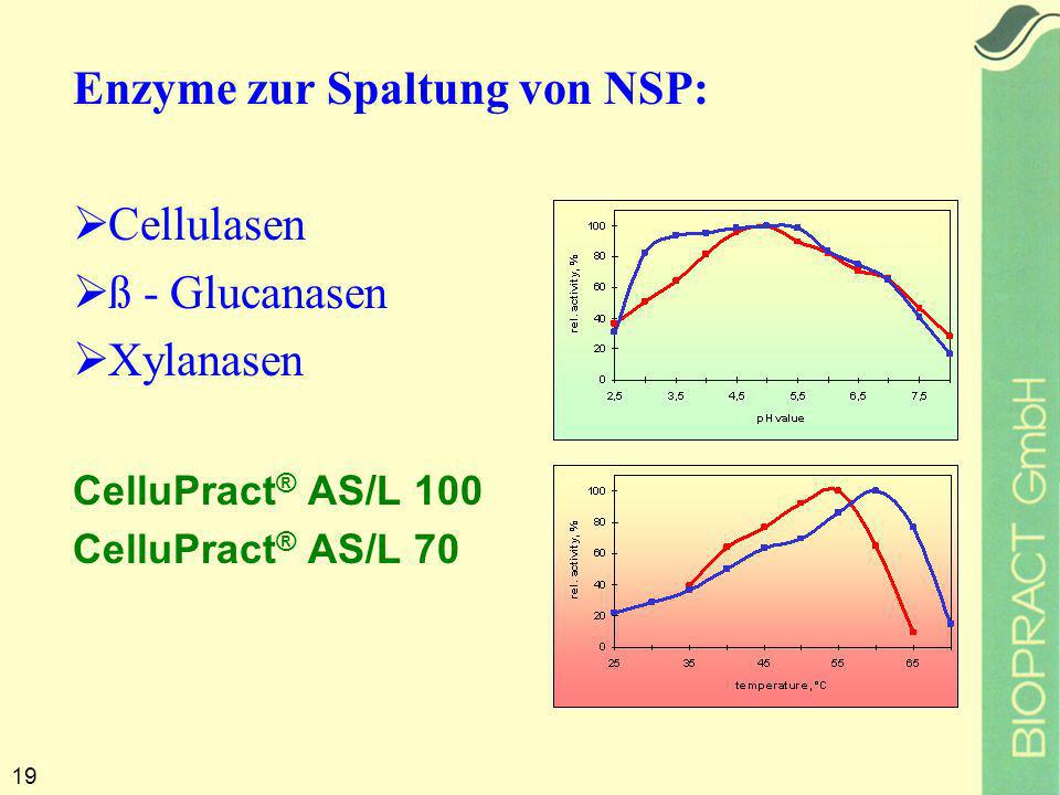 19 Enzyme zur Spaltung von NSP: Cellulasen ß - Glucanasen Xylanasen CelluPract ® AS/L 100 CelluPract ® AS/L 70