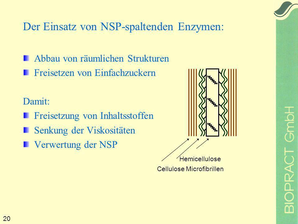 20 Der Einsatz von NSP-spaltenden Enzymen: Abbau von räumlichen Strukturen Freisetzen von Einfachzuckern Damit: Freisetzung von Inhaltsstoffen Senkung der Viskositäten Verwertung der NSP Hemicellulose Cellulose Microfibrillen