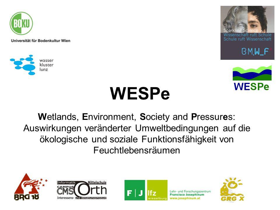 WESPe Wetlands, Environment, Society and Pressures: Auswirkungen veränderter Umweltbedingungen auf die ökologische und soziale Funktionsfähigkeit von