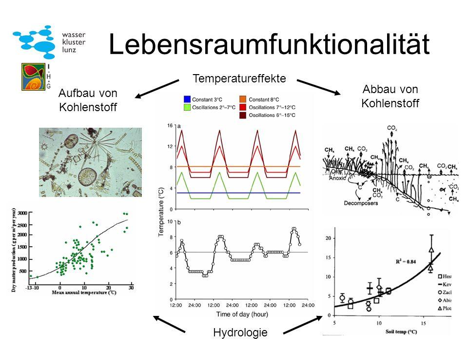 Lebensraumfunktionalität Temperatureffekte Aufbau von Kohlenstoff Abbau von Kohlenstoff Hydrologie