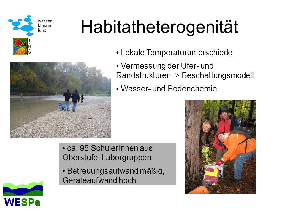 Habitatheterogenität Lokale Temperaturunterschiede Vermessung der Ufer- und Randstrukturen -> Beschattungsmodell Wasser- und Bodenchemie ca. 95 Schüle