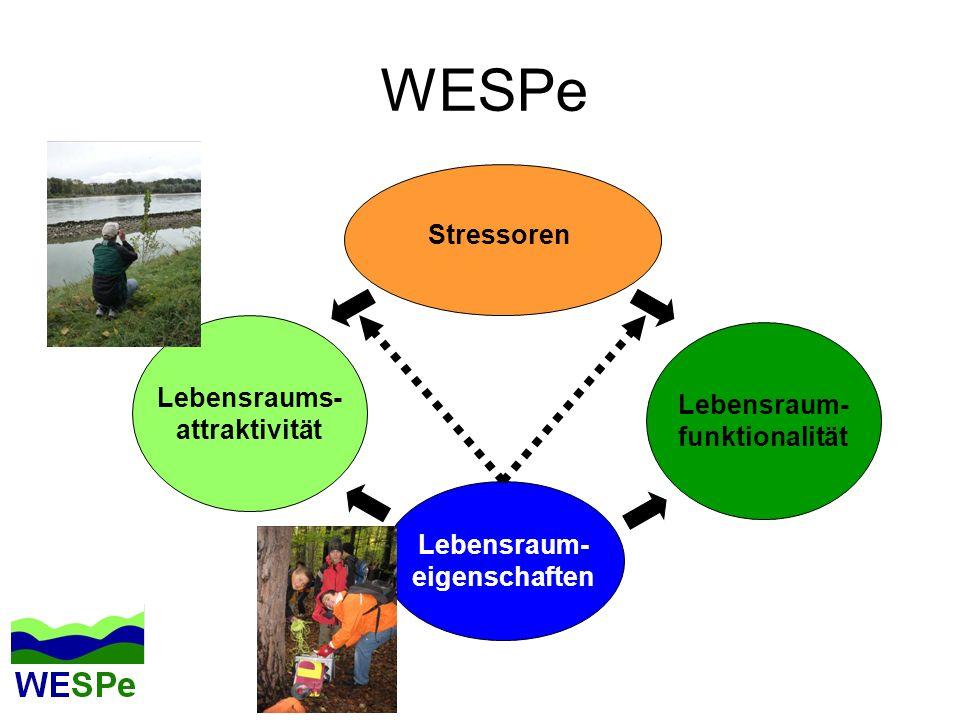 WESPe Stressoren Lebensraums- attraktivität Lebensraum- funktionalität Lebensraum- eigenschaften