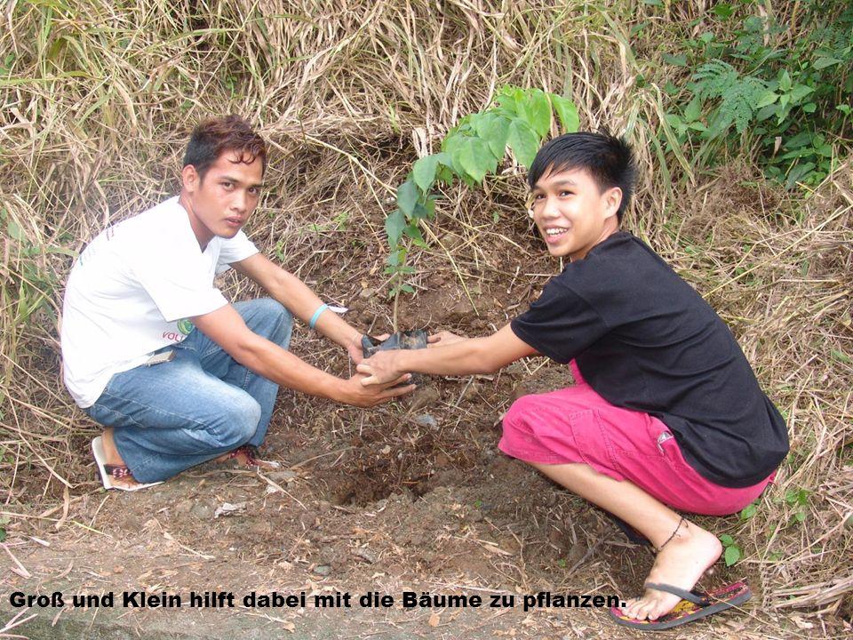 Groß und Klein hilft dabei mit die Bäume zu pflanzen.