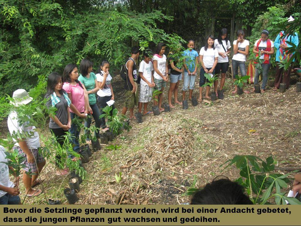 Bevor die Setzlinge gepflanzt werden, wird bei einer Andacht gebetet, dass die jungen Pflanzen gut wachsen und gedeihen.