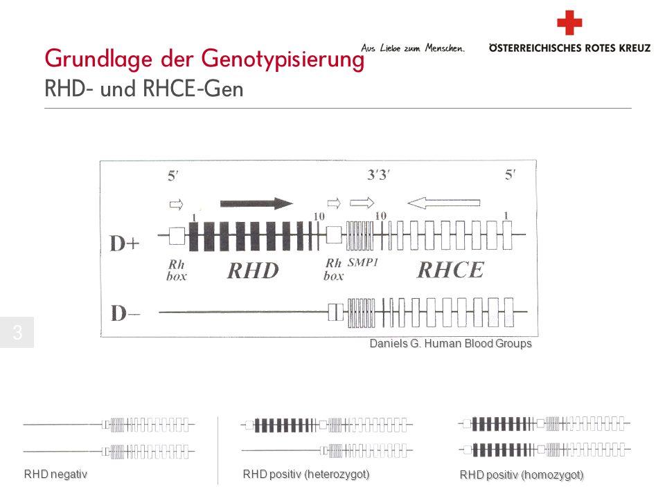 Grundlage der Genotypisierung RHD- und RHCE-Gen Daniels G. Human Blood Groups 3 RHD negativ RHD positiv (heterozygot) RHD positiv (homozygot)