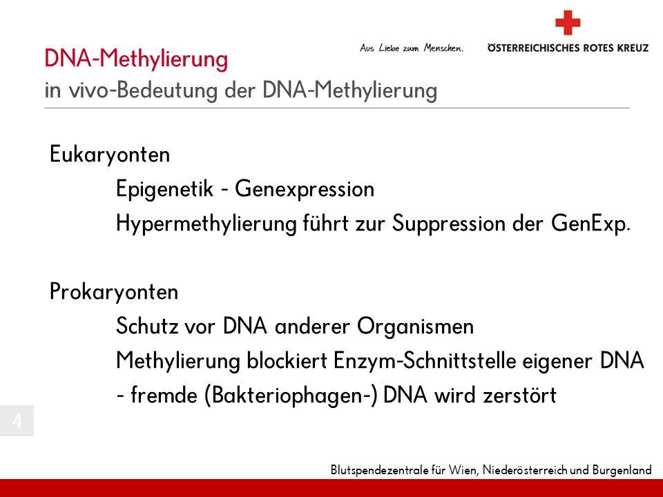Blutspendezentrale für Wien, Niederösterreich und Burgenland Eukaryonten Epigenetik - Genexpression Hypermethylierung führt zur Suppression der GenExp