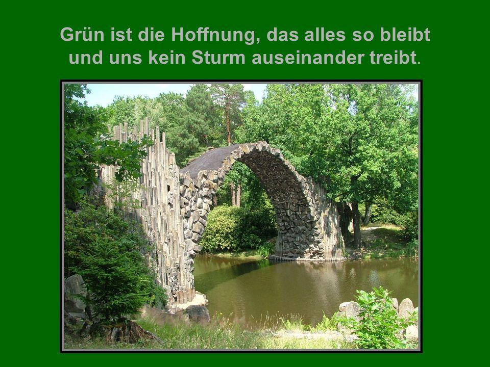 Grün ist die Hoffnung, das alles so bleibt und uns kein Sturm auseinander treibt.