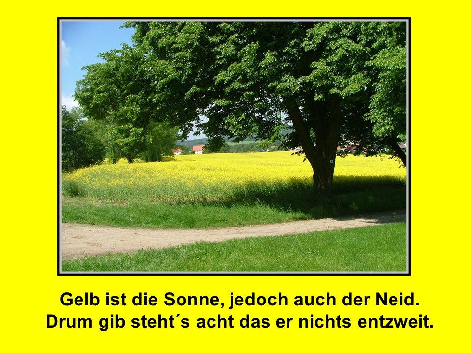 Gelb ist die Sonne, jedoch auch der Neid. Drum gib steht´s acht das er nichts entzweit.
