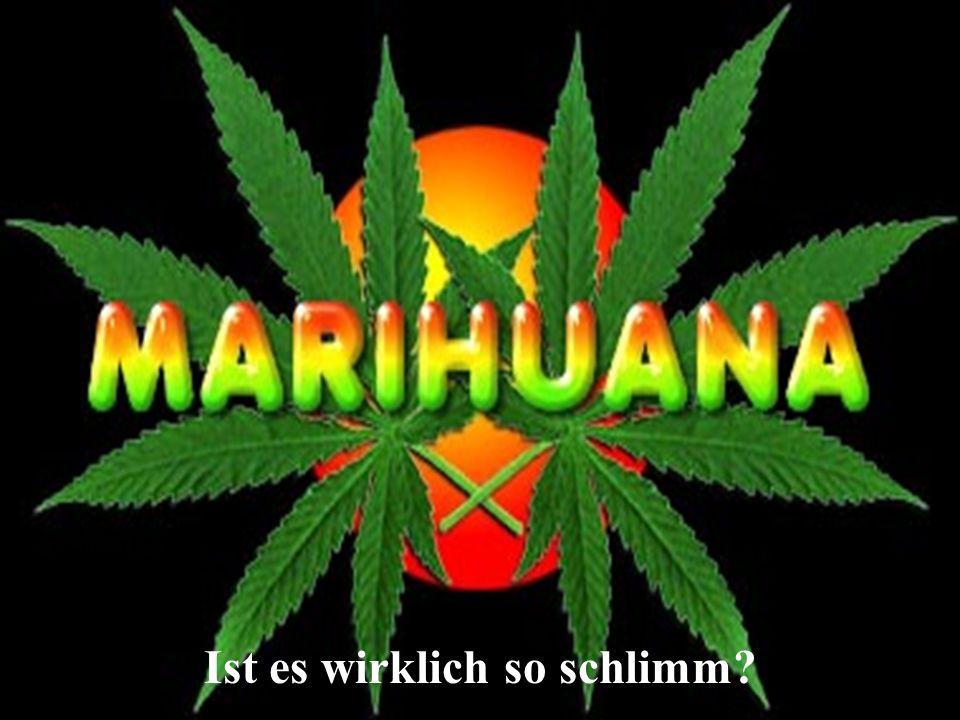 D.Jauss2 Der Konsum von Marihuana und Haschisch verbirgt ungelöste Probleme.