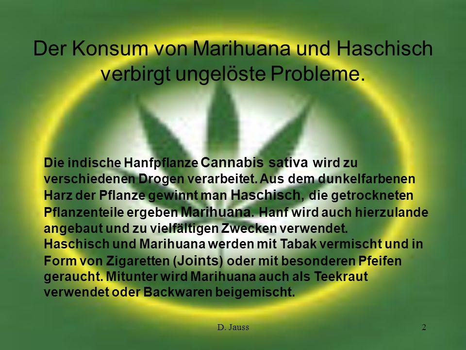 D. Jauss2 Der Konsum von Marihuana und Haschisch verbirgt ungelöste Probleme. Die indische Hanfpflanze Cannabis sativa wird zu verschiedenen Drogen ve