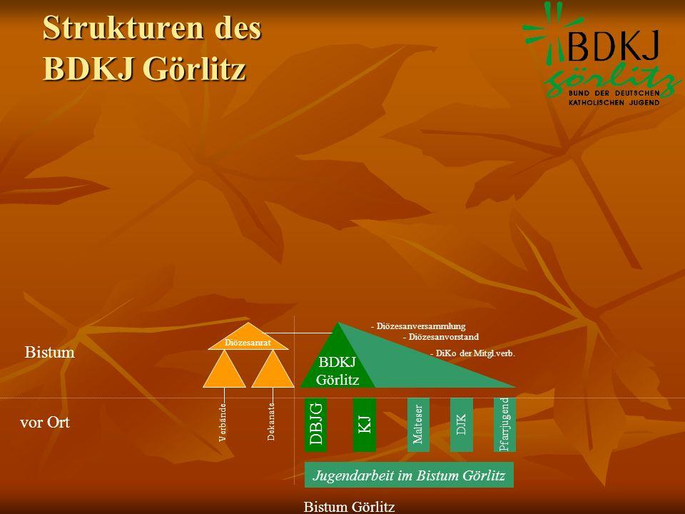 Strukturen des BDKJ Görlitz DBJGKJ PfarrjugendDJKMalteser BDKJ Görlitz Bistum Görlitz Jugendarbeit im Bistum Görlitz - Diözesanversammlung - Diözesanv