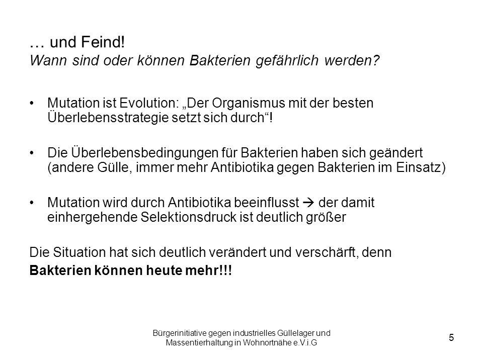 Bürgerinitiative gegen industrielles Güllelager und Massentierhaltung in Wohnortnähe e.V.i.G 6 Freund oder Feind.