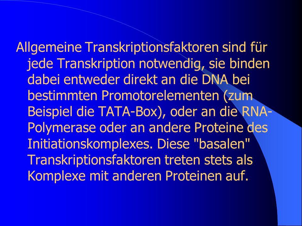 Allgemeine Transkriptionsfaktoren sind für jede Transkription notwendig, sie binden dabei entweder direkt an die DNA bei bestimmten Promotorelementen